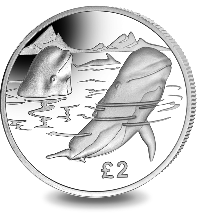 2017 Pilot Whale from the Pobjoy Mint Series