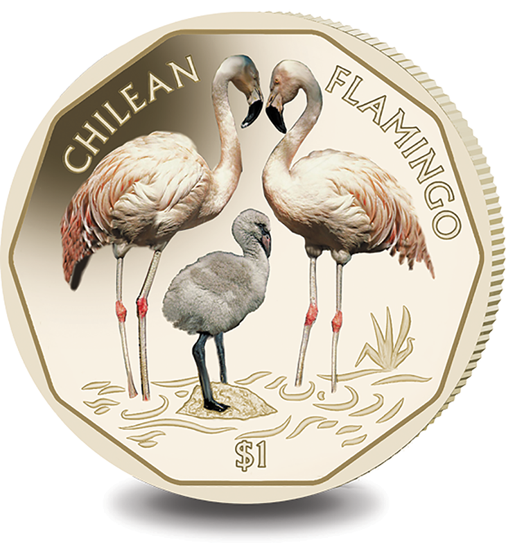 2019 BVI Chilean $1 Flamingo