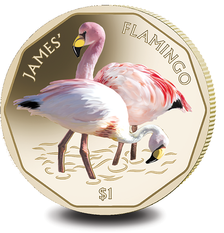 2019 BVI James $1 Flamingo